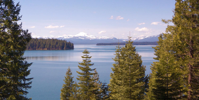 Lake cove resort home for Lake almanor fishing report